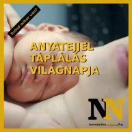 A szoptatás világnapján kezdődik az anyatejjel táplálás hete