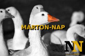 Márton-nap eredete - Ki volt Szent Márton?